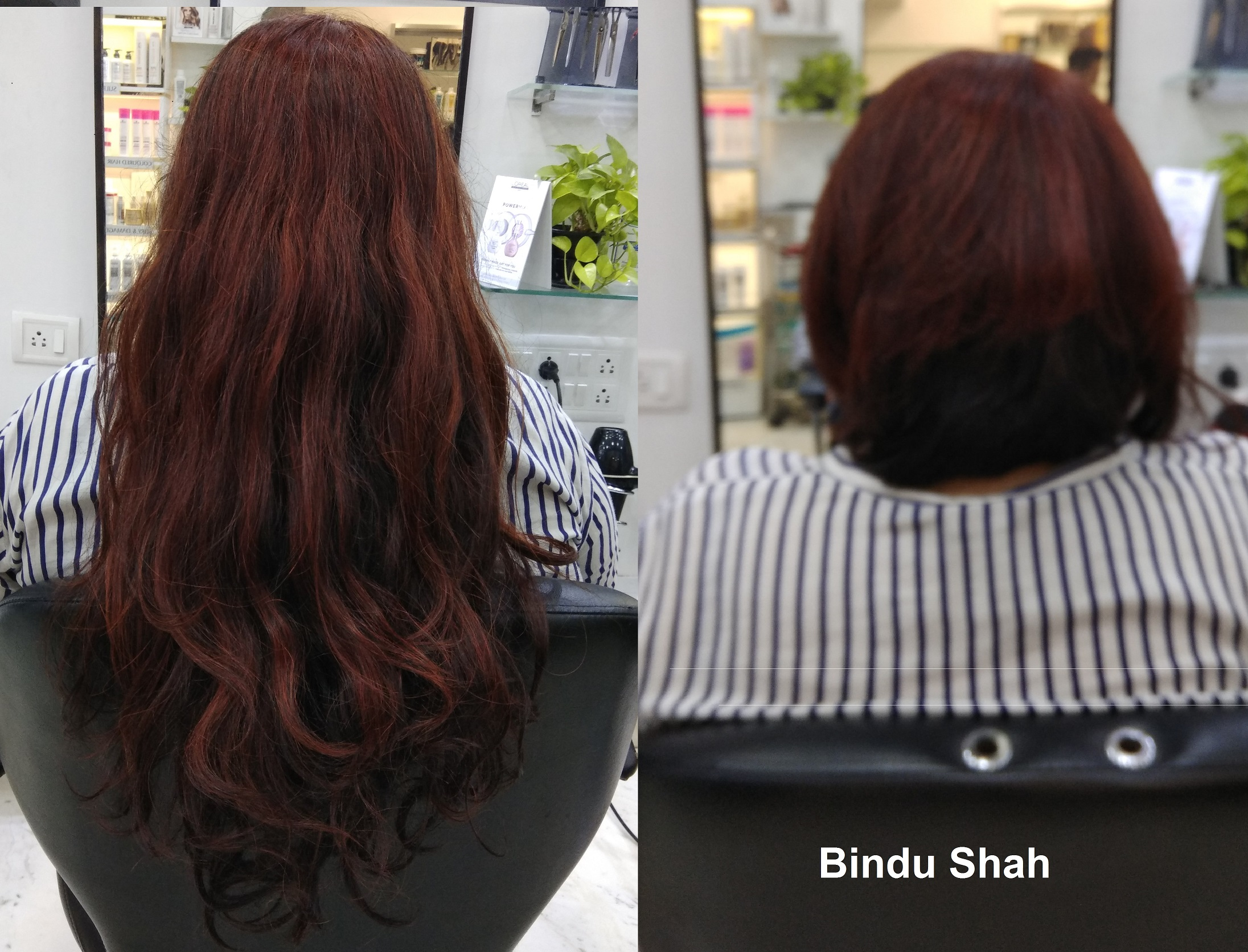 Bindu Shah